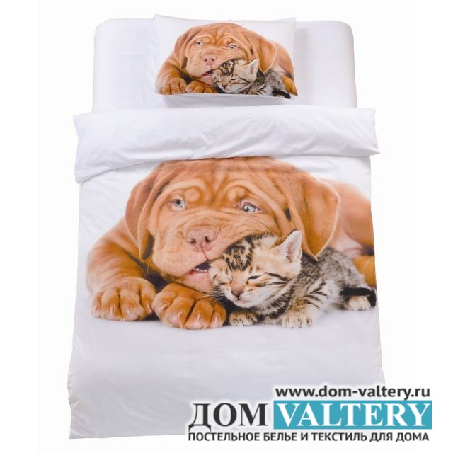 Детское постельное белье Valtery DS-19 (размер 1,5-спальный)