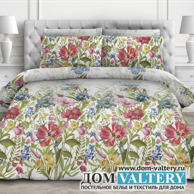 Постельное белье Valtery AP-65 (размер 2-спальный)