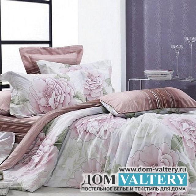 Постельное белье Valtery C-038 (размер 2-спальный)
